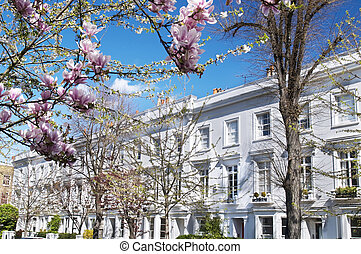 Luxury terraced houses at West-London. - Luxury terraced...