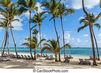 luxus, cluburlaub, sandstrand, in, punta, cana,...