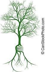 luz, árvore, raizes, bulbo