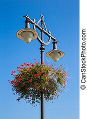 luz azul, cielo, calle, plano de fondo, flores