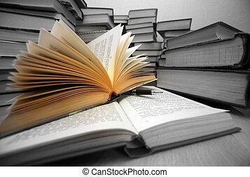 luz, -, conocimiento