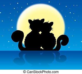 luz de la luna, gatos, dos