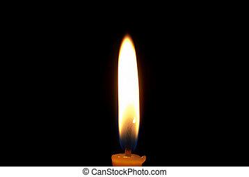 luz, en, oscuridad