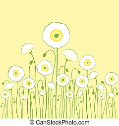 luz, fundo branco, amarela, papoula