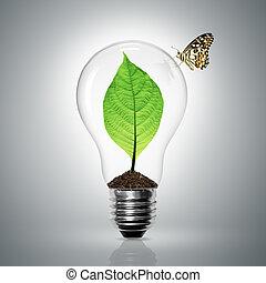 luz, hojas, crecer, bombilla