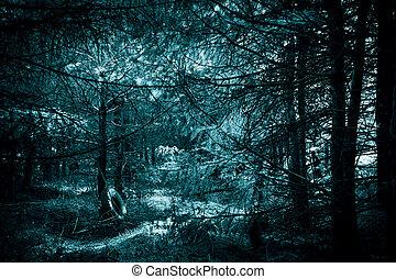 luz, lua, assustador, escuridão, horror, sombra, halloween., místico, floresta densa, misteriosa, spooky, pretas, paranormal, desajeitado, fundo, árvores, azul, assustador, antigas, sótão, verde