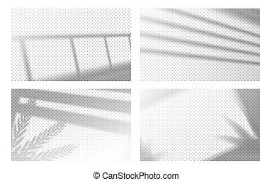 luz, transparente, sombra, folhas, quadro, vetorial, shadow., janela, tropicais, effect., realístico, louvers, jogo