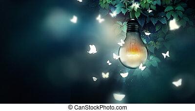 luz, vuelo