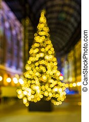 luzes, glowing, árvore, natal