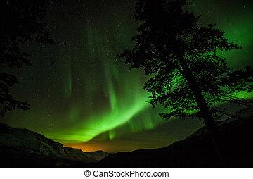 luzes, suécia, norte