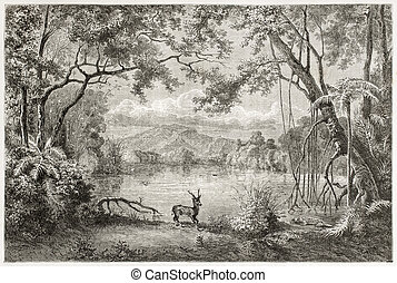 Luzon - Old view of enchanted lagoon, in Luzon island,...