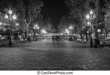 lviv, 城市, 夜晚, 風景