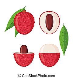 Lychee fruit icons set in flat style isolated on white background.