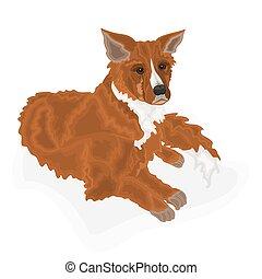 Lying dog domestic animal vector illustration