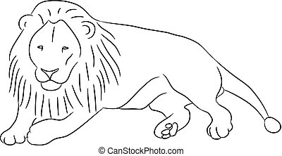 lying lion from the contour black lines on white of vector illustration