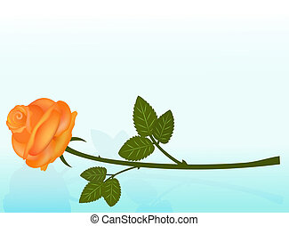 Lying orange rose on blue background with copy space.