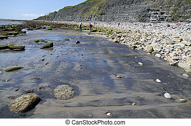 Lyme Regis beach, famous for fossils - Lyme Regis beach on...