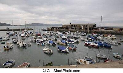 Lyme Regis harbour Dorset uk - Lyme Regis Dorset England UK...