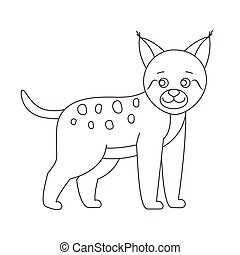 Lynx for coloring book
