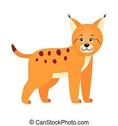Lynx, illustration for children.