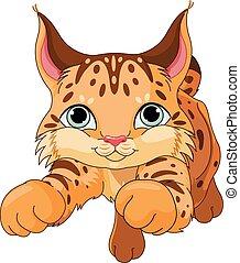 Lynx - Illustration of cute lynx
