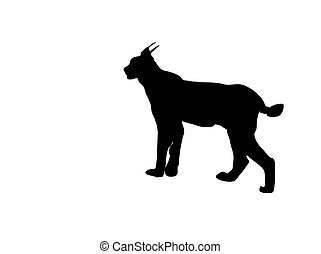 lynx silhouette vector - this is the black silhouette from a...