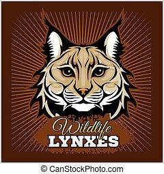lynxes, wektor, -, emblem.