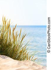 lysande, strand scen
