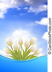 lysande, tulips., kort