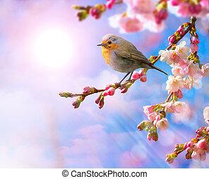 lyserød, blomstre, forår, abstrakt, baggrund, grænse