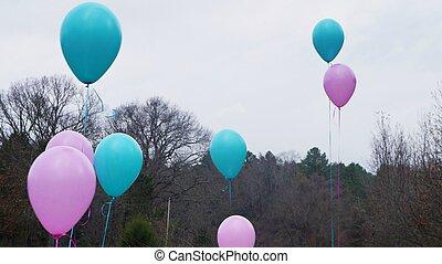 lyserød, og blå, balloner