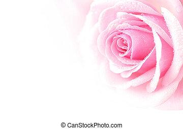 lyserøde steg
