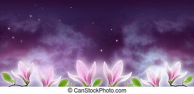 mágico, céu, flores, brilhar, magnólia, nuvens, fundo, fantasia, estrelas, noturna, misteriosa