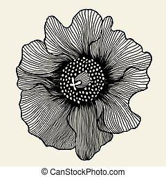 mák, virág