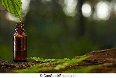 másol, savanyúcukorka, szakáll, spece, olaj, balzsam, zöld, leaf., szöveg, háttér., vagy