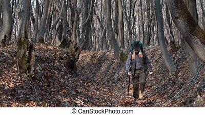 mâle, forêt, touriste, ravin, marche