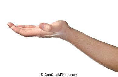 mâle, main