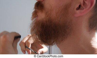 mâle, moustache, rouges, home., caucasien, cheveux, émondage, barbe, comb., barbu, sien, ciseaux, homme, propre, figure, découpage