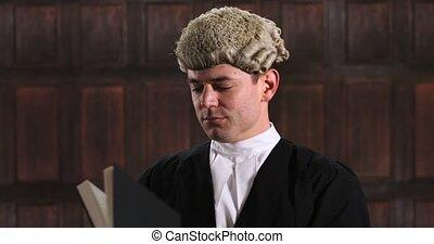 mâle, tribunal, livre, avocat, portrait, lecture, droit & ...