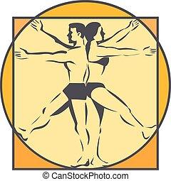 mâle, vinci, bras, da, retro, femme, ligne, jambes, dessin, ...
