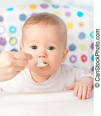 mãe, alimenta, engraçado, bebê, de, colher