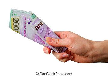 mão, com, banco euro anota, sobre, fundo branco