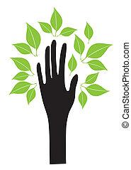 mão, com, folhas