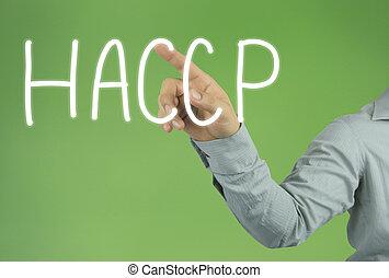 mão, de, a, homem negócios, apontar, a, haccp, texto, ligado, verde, experiência.