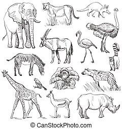 mão, desenhado, animal, planeta, jogo
