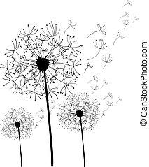 mão, desenhado, dandelion, isolado