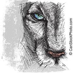 mão, desenhado, esboço, de, um, leão, olhar, atentamente,...
