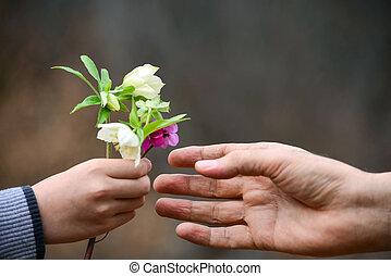 mão, e, flores, para, presente, conceitual