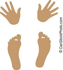 mão, e, pé