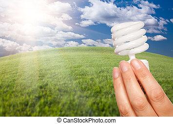 mão feminina, com, energia, poupar, bulbo leve, sobre, campo